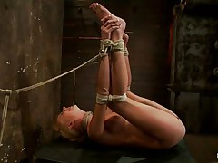 She's Kaylee and her pink wet snatch says it all as the executor applies a vibrator on it and then the brunette lesbian with hot ass copulates that bald muff with a strap on dildo. Kaylee is tied up real priceless and her hot legs are spread wide so we can perfectly see what is happening with her love tunnel and how the lesbian enjoys inserting her sex toy in it. Her blonde hair, pretty face and wet muff can make any chap horny and willing to cum on them, but what will the lesbian chick do, will she get greater amount help from that guy?
